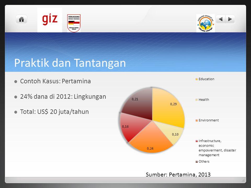 Praktik dan Tantangan  Contoh Kasus: Pertamina  24% dana di 2012: Lingkungan  Total: US$ 20 juta/tahun Sumber: Pertamina, 2013