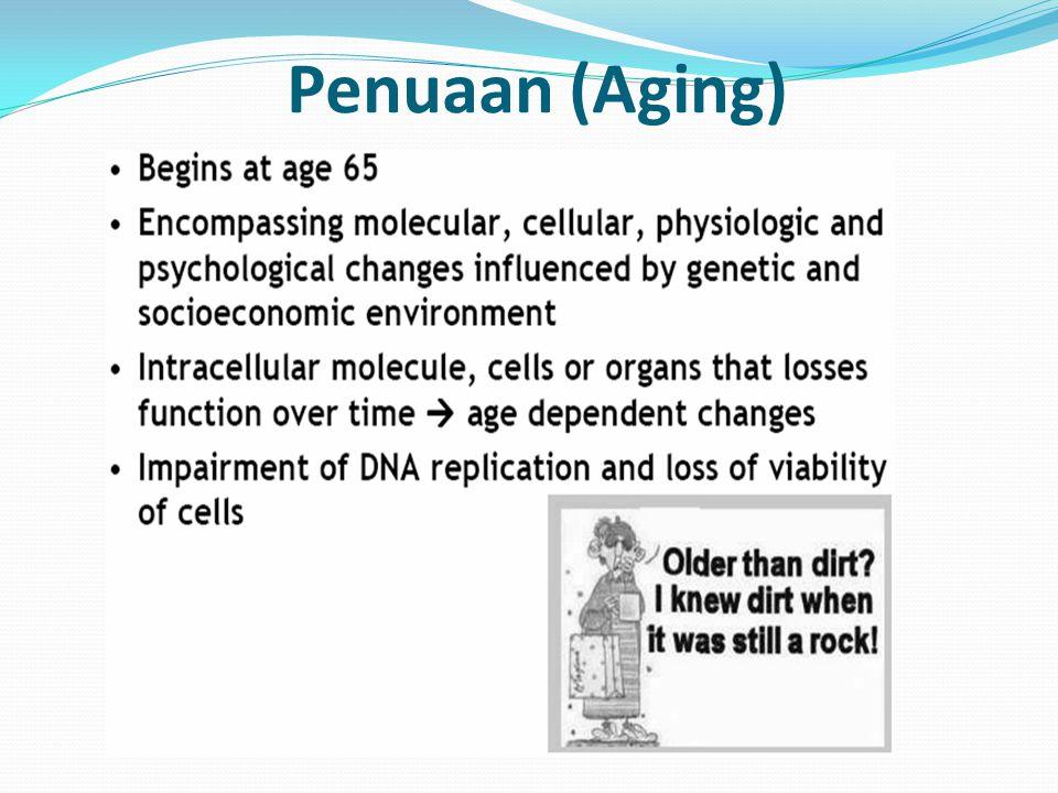 Penuaan (Aging)