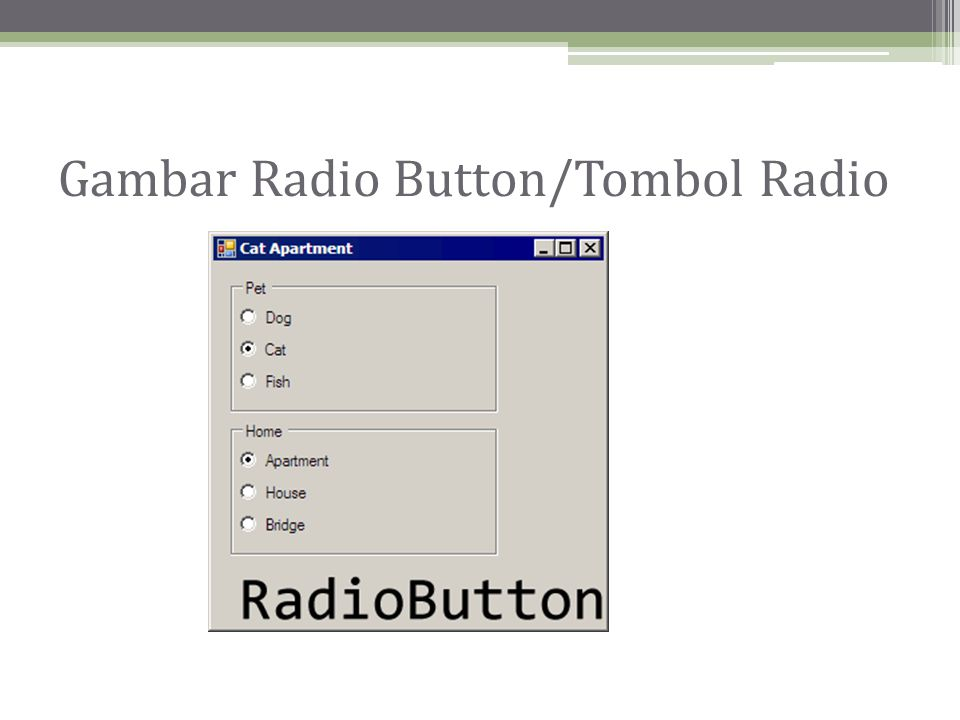 Gambar Radio Button/Tombol Radio