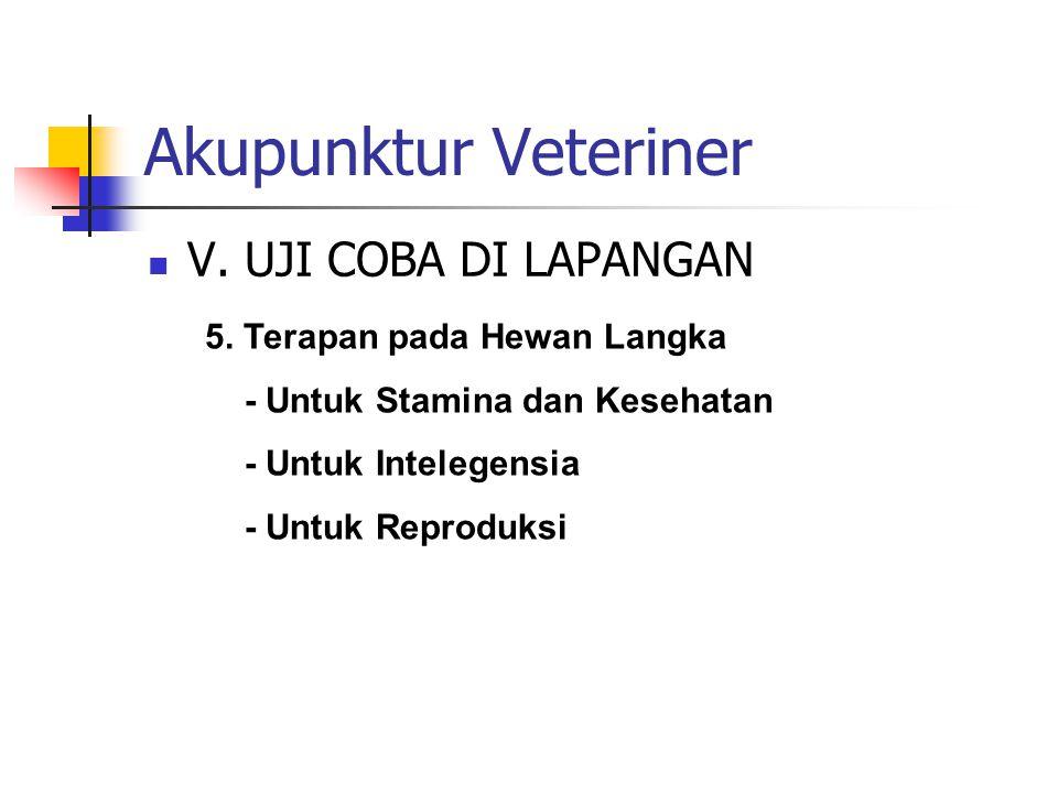 Akupunktur Veteriner  VI.