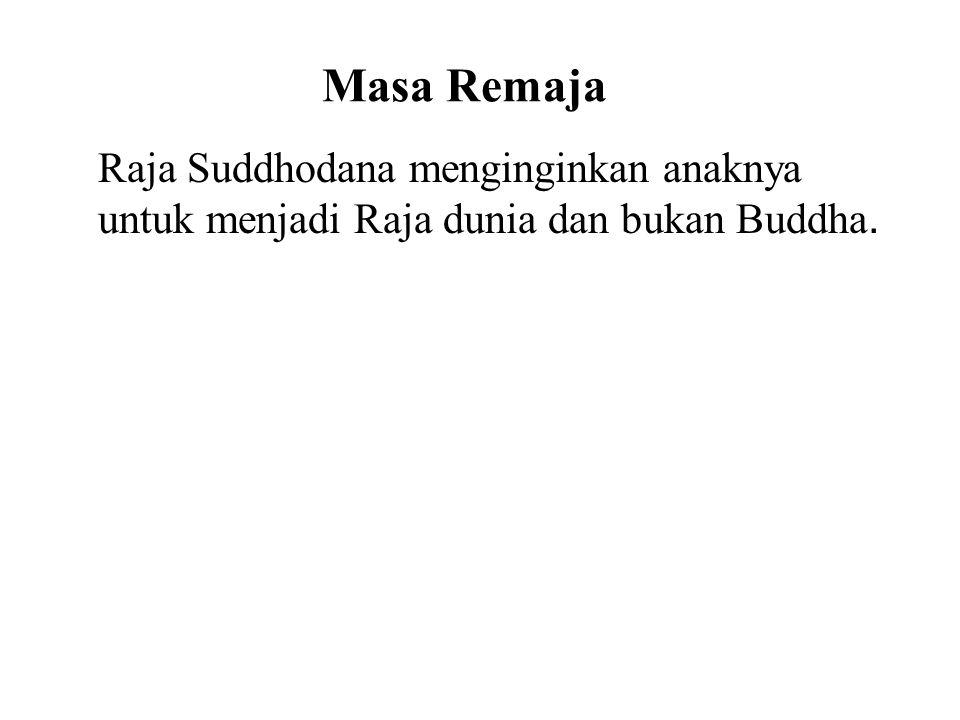Masa Remaja Raja Suddhodana menginginkan anaknya untuk menjadi Raja dunia dan bukan Buddha. He thus shielded him from the realities of life by buildin