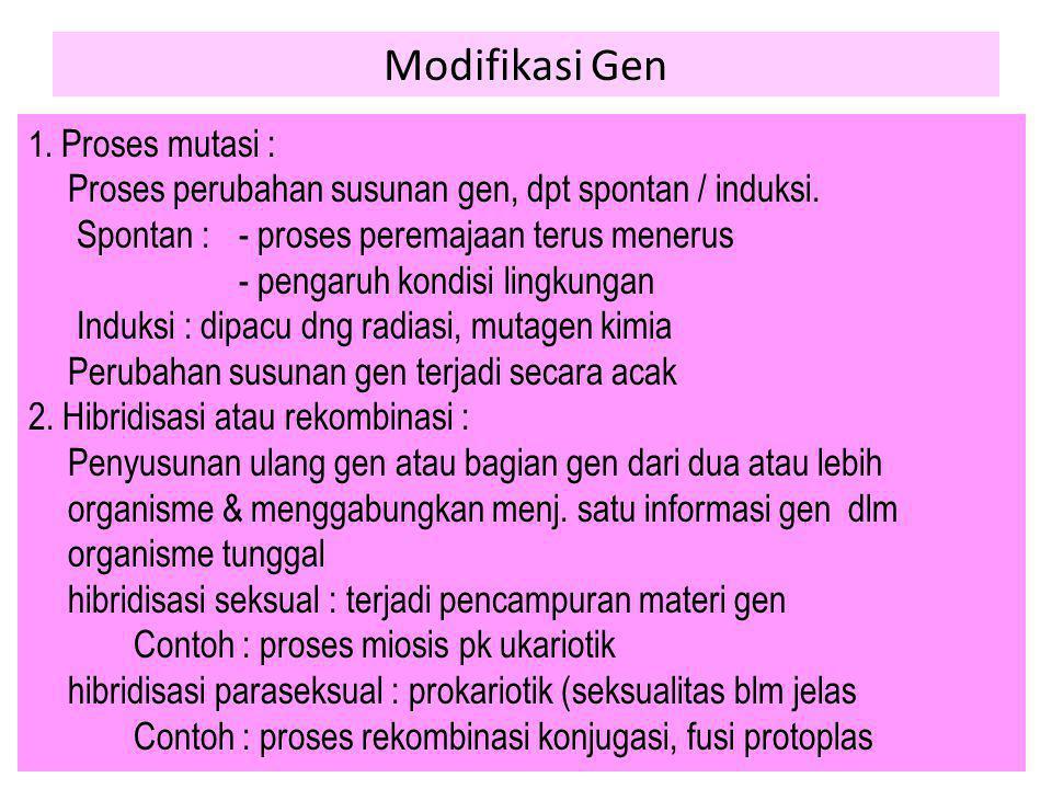 Modifikasi Gen 1. Proses mutasi : Proses perubahan susunan gen, dpt spontan / induksi. Spontan : - proses peremajaan terus menerus - pengaruh kondisi