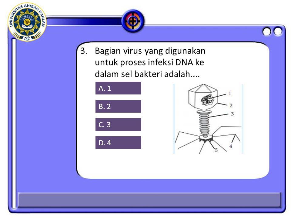 3.Bagian virus yang digunakan untuk proses infeksi DNA ke dalam sel bakteri adalah....