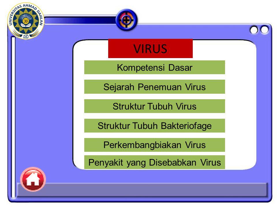 Kompetensi Dasar: Mendeskripsikan ciri-ciri, replikasi dan peran virus dalam kehidupan sehari-hari.