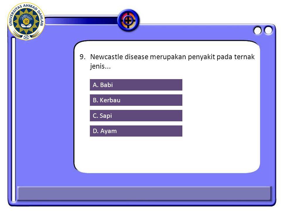 9.Newcastle disease merupakan penyakit pada ternak jenis... A. Babi B. Kerbau C. Sapi D. Ayam