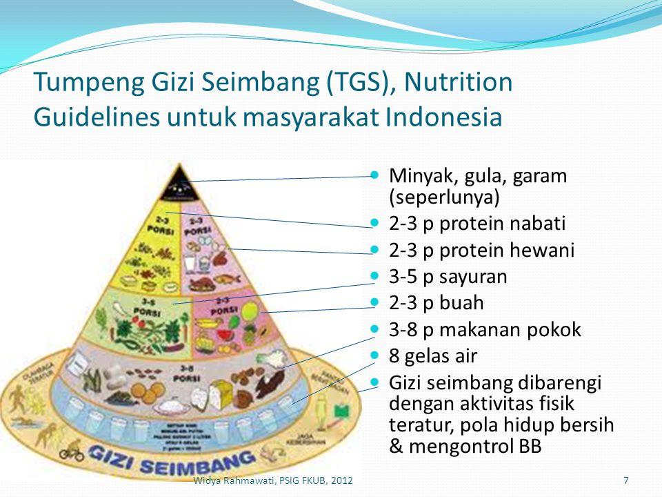 Tumpeng Gizi Seimbang (TGS), Nutrition Guidelines untuk masyarakat Indonesia  Minyak, gula, garam (seperlunya)  2-3 p protein nabati  2-3 p protein