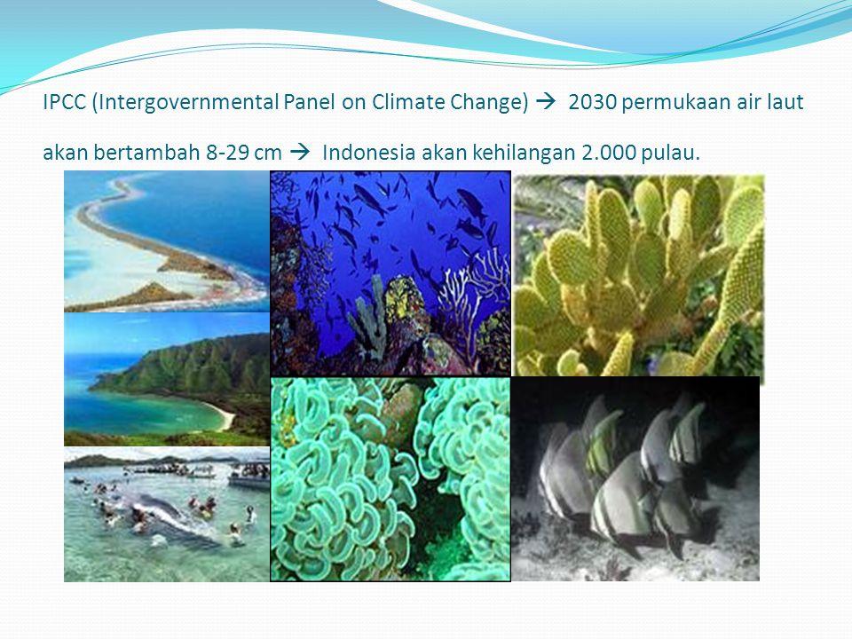 IPCC (Intergovernmental Panel on Climate Change)  2030 permukaan air laut akan bertambah 8-29 cm  Indonesia akan kehilangan 2.000 pulau.