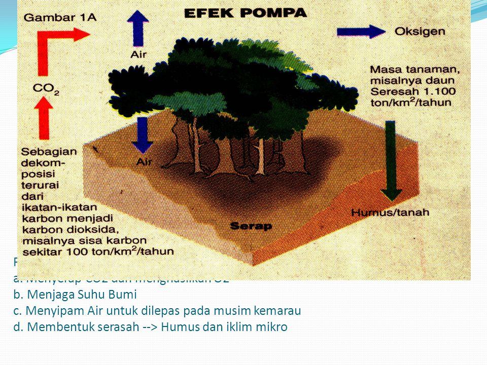 Pohon, Hutan berfungsi sebagai Pompa : a. Menyerap CO2 dan menghasilkan O2 b.
