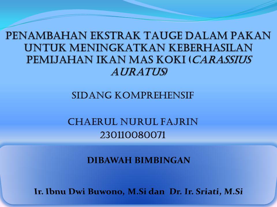 SIDANG KOMPREHENSIF CHAERUL NURUL FAJRIN 230110080071