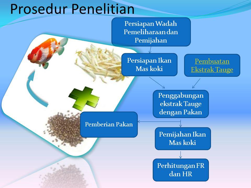 Prosedur Penelitian Pembuatan Ekstrak Tauge Persiapan Wadah Pemeliharaan dan Pemijahan Perhitungan FR dan HR Pemijahan Ikan Mas koki Persiapan Ikan Ma