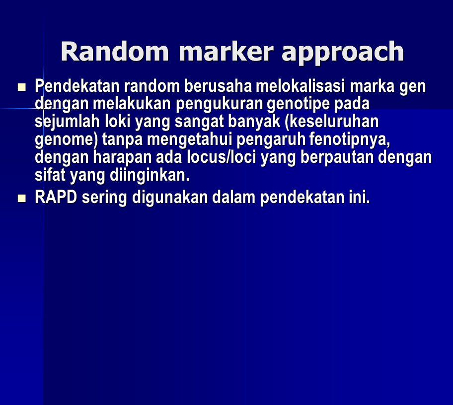 Random marker approach  Pendekatan random berusaha melokalisasi marka gen dengan melakukan pengukuran genotipe pada sejumlah loki yang sangat banyak