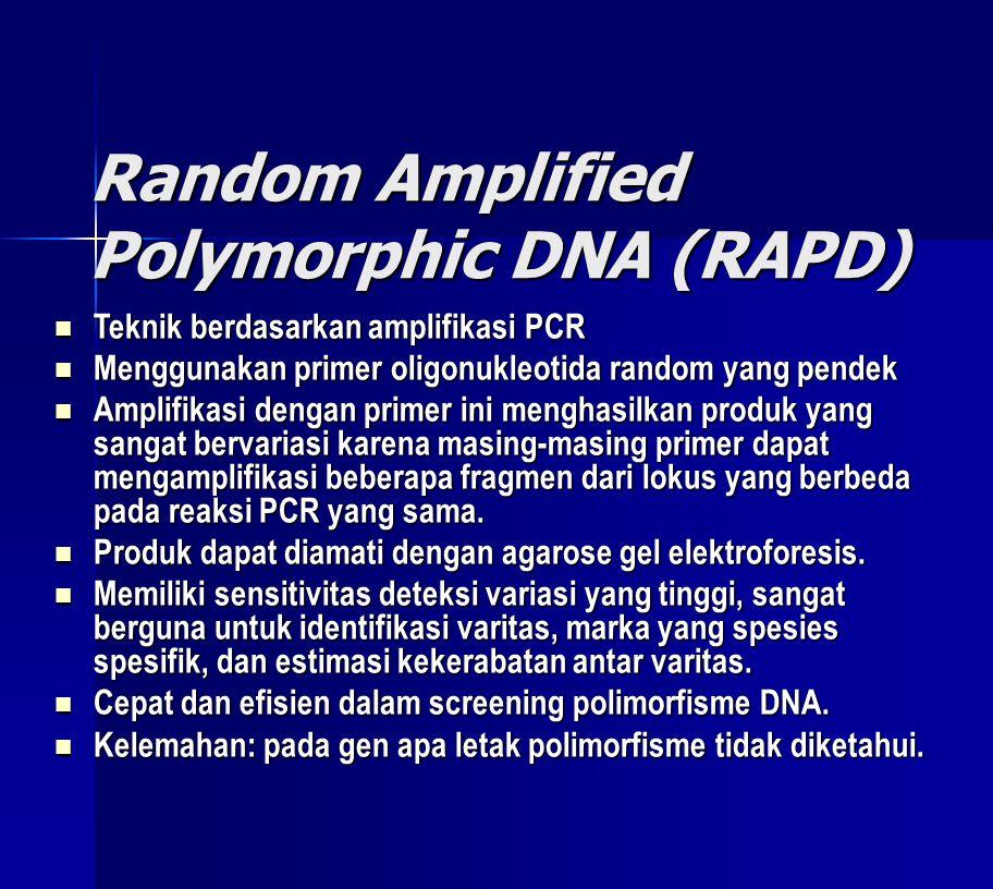 Random Amplified Polymorphic DNA (RAPD)  Teknik berdasarkan amplifikasi PCR  Menggunakan primer oligonukleotida random yang pendek  Amplifikasi dengan primer ini menghasilkan produk yang sangat bervariasi karena masing-masing primer dapat mengamplifikasi beberapa fragmen dari lokus yang berbeda pada reaksi PCR yang sama.