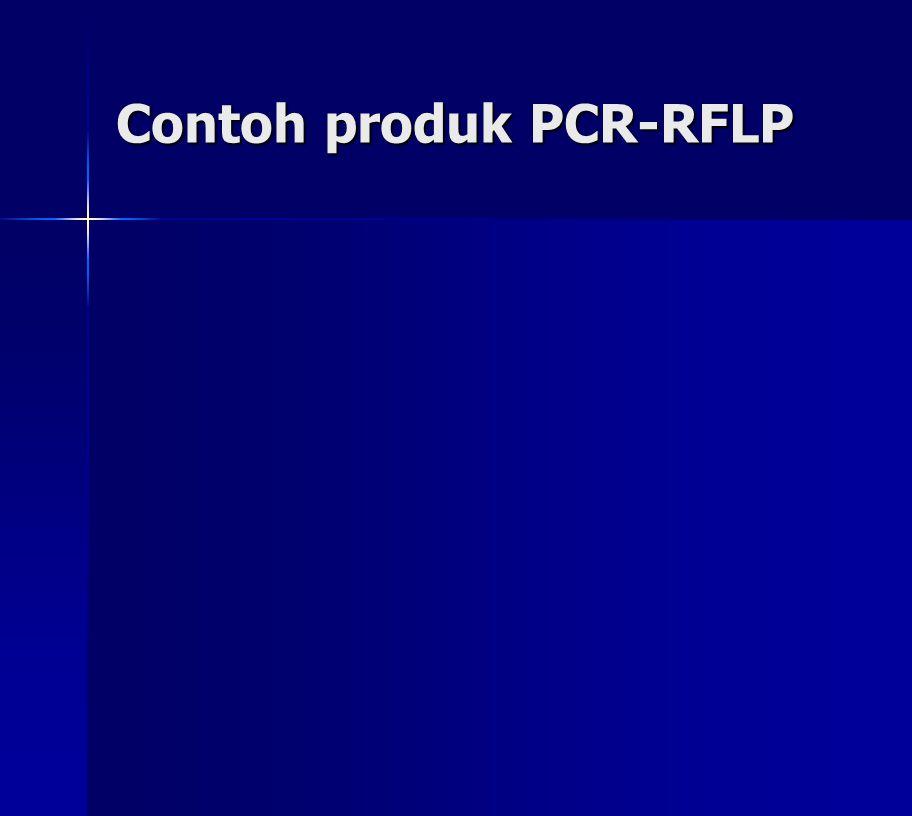 Contoh produk PCR-RFLP