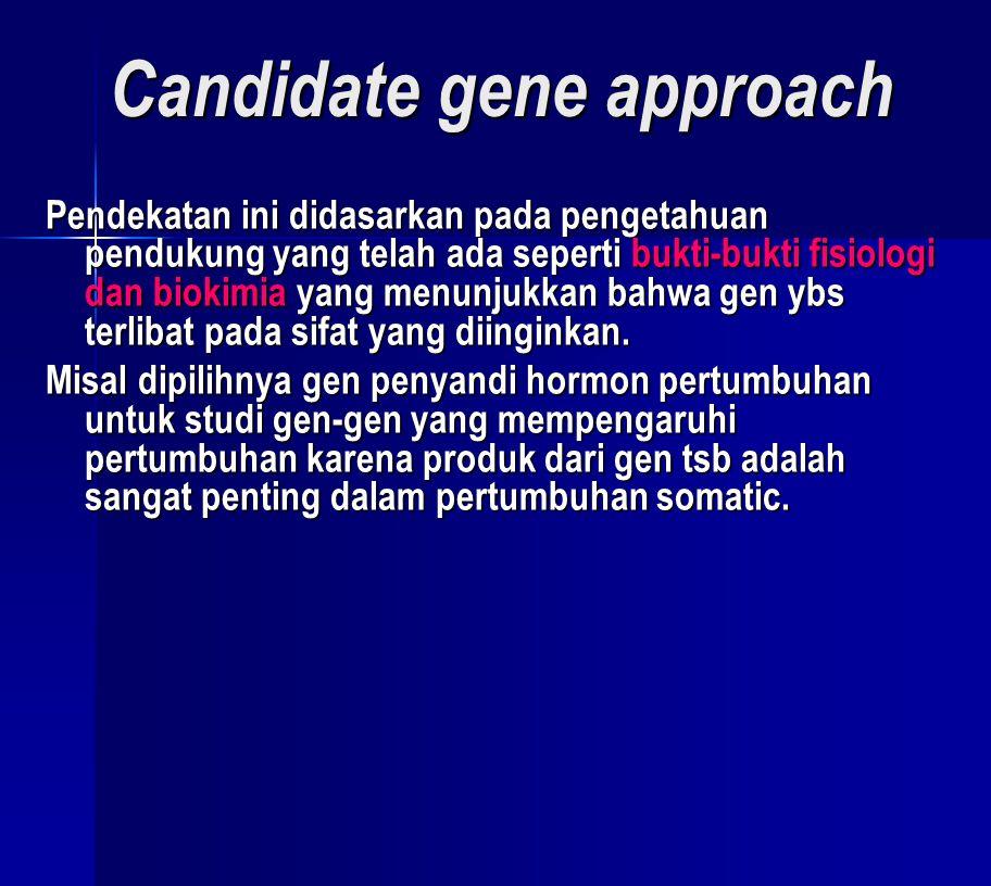 Keuntungan pendekatan kandidat gen:  Gen yang dipelajari terlibat pada sifat fenotip yg diinginkan.