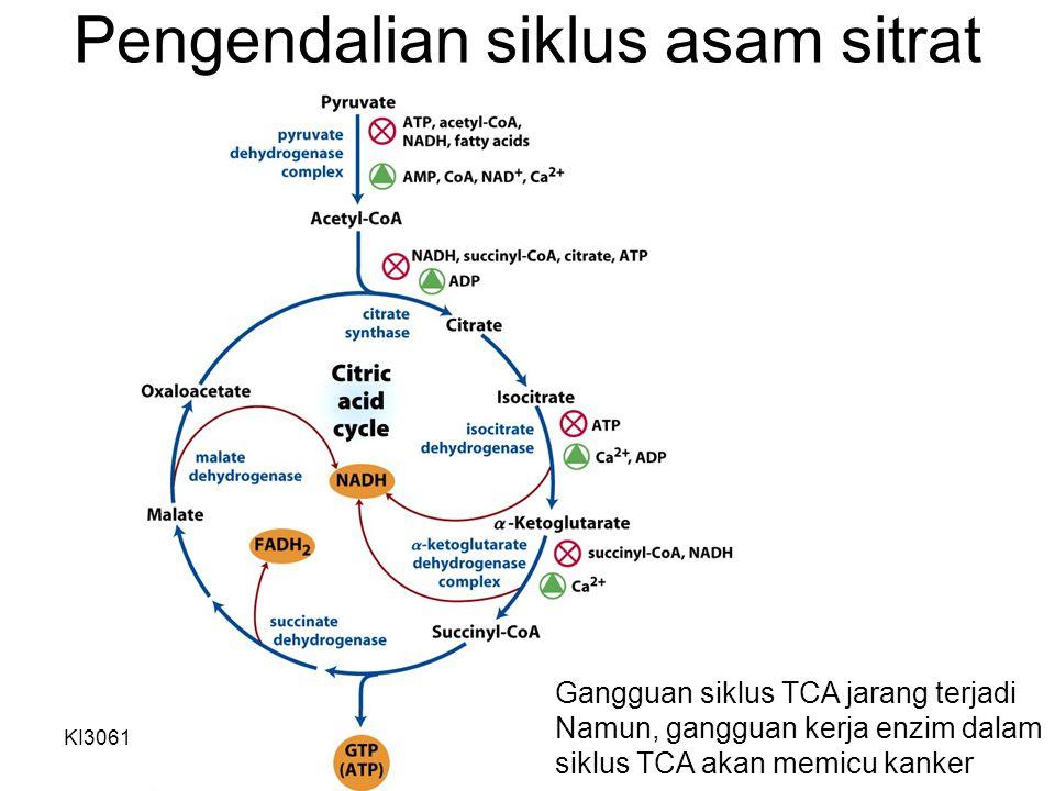 KI3061Zeily Nurachman11 Pengendalian siklus asam sitrat Gangguan siklus TCA jarang terjadi Namun, gangguan kerja enzim dalam siklus TCA akan memicu ka