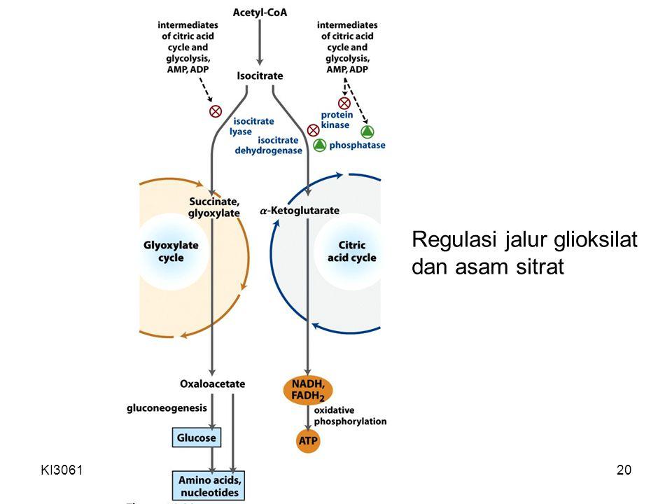 KI3061Zeily Nurachman20 Regulasi jalur glioksilat dan asam sitrat
