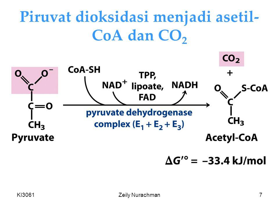 KI3061Zeily Nurachman7 Piruvat dioksidasi menjadi asetil- CoA dan CO 2