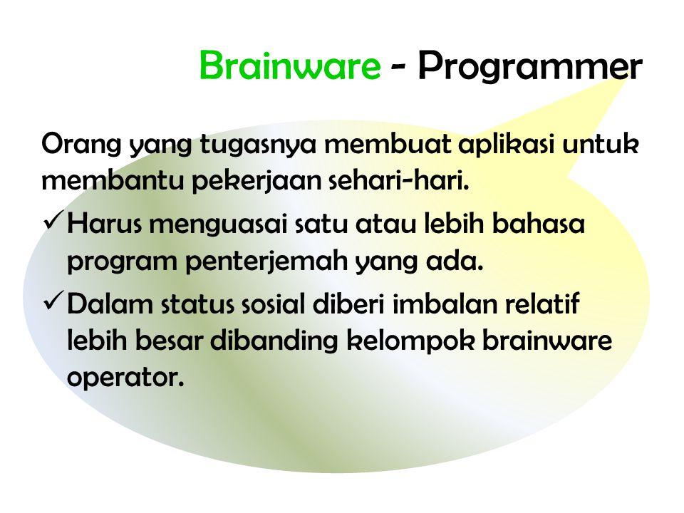 Brainware - Programmer Orang yang tugasnya membuat aplikasi untuk membantu pekerjaan sehari-hari.  Harus menguasai satu atau lebih bahasa program pen