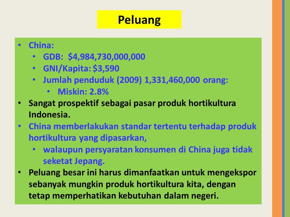 • China: • GDB: $4,984,730,000,000 • GNI/Kapita: $3,590 • Jumlah penduduk (2009) 1,331,460,000 orang: • Miskin: 2.8% • Sangat prospektif sebagai pasar