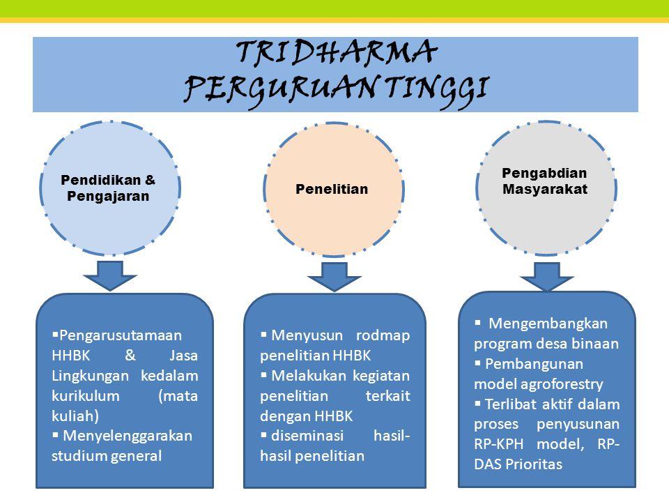 TRI DHARMA PERGURUAN TINGGI Pendidikan & Pengajaran Penelitian Pengabdian Masyarakat  Pengarusutamaan HHBK & Jasa Lingkungan kedalam kurikulum (mata kuliah)  Menyelenggarakan studium general  Menyusun rodmap penelitian HHBK  Melakukan kegiatan penelitian terkait dengan HHBK  diseminasi hasil- hasil penelitian  Mengembangkan program desa binaan  Pembangunan model agroforestry  Terlibat aktif dalam proses penyusunan RP-KPH model, RP- DAS Prioritas