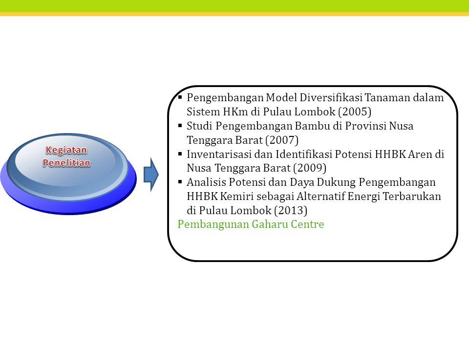  Pengembangan Model Diversifikasi Tanaman dalam Sistem HKm di Pulau Lombok (2005)  Studi Pengembangan Bambu di Provinsi Nusa Tenggara Barat (2007)  Inventarisasi dan Identifikasi Potensi HHBK Aren di Nusa Tenggara Barat (2009)  Analisis Potensi dan Daya Dukung Pengembangan HHBK Kemiri sebagai Alternatif Energi Terbarukan di Pulau Lombok (2013) Pembangunan Gaharu Centre