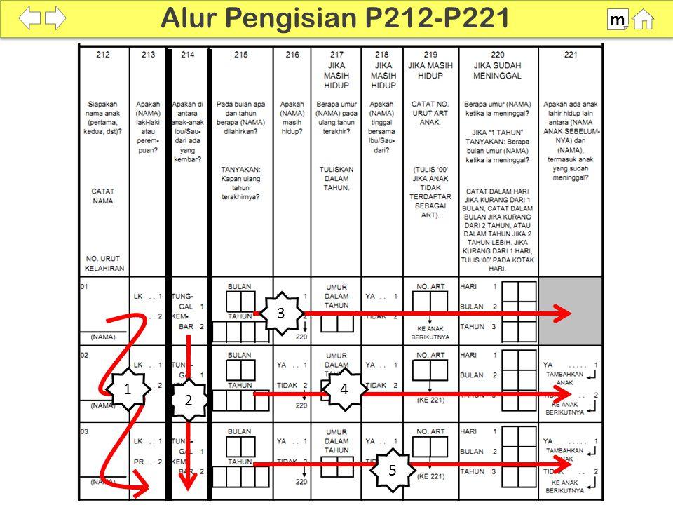 100% SDKI 2012 Alur Pengisian P212-P221 m 3 4 5 1 2
