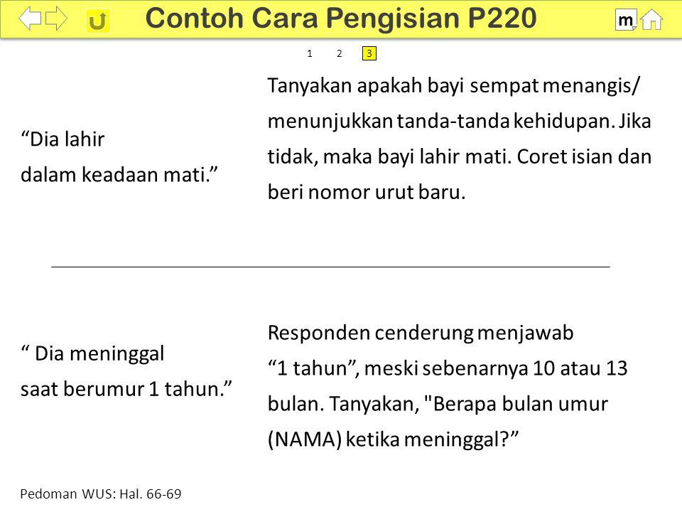 100% SDKI 2012 Contoh Cara Pengisian P220 m Pedoman WUS: Hal.