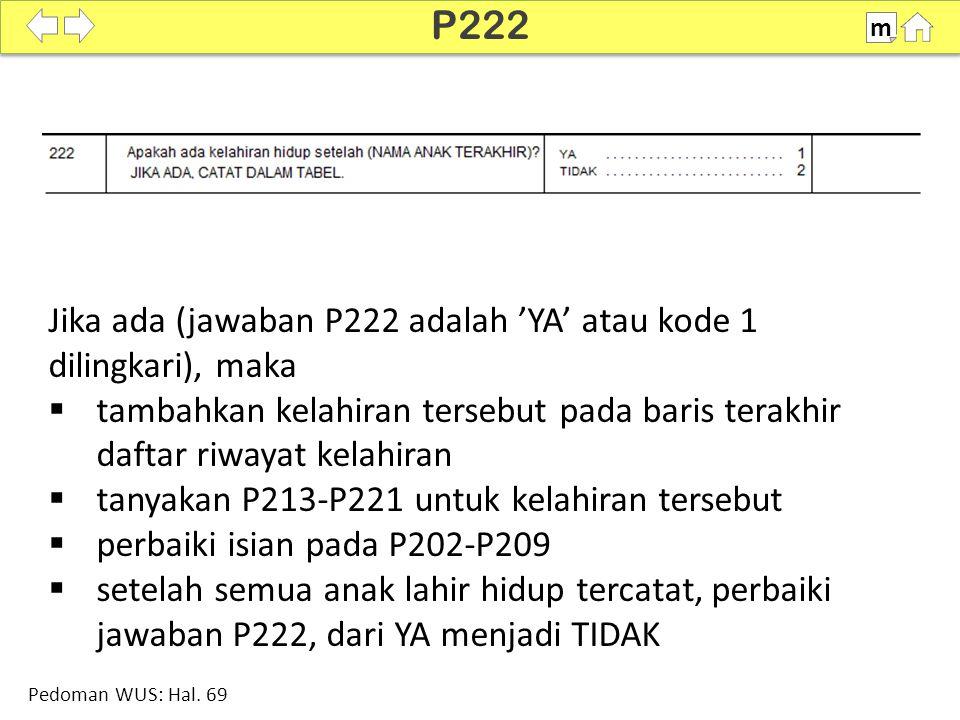 100% SDKI 2012 P222 m Pedoman WUS: Hal. 69 Jika ada (jawaban P222 adalah 'YA' atau kode 1 dilingkari), maka  tambahkan kelahiran tersebut pada baris