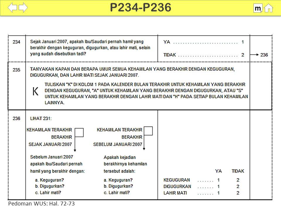 100% SDKI 2012 P234-P236 m Pedoman WUS: Hal. 72-73