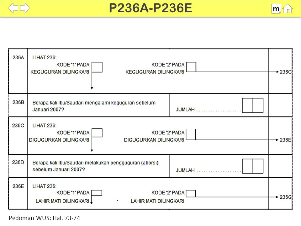 100% P236A-P236E m Pedoman WUS: Hal. 73-74