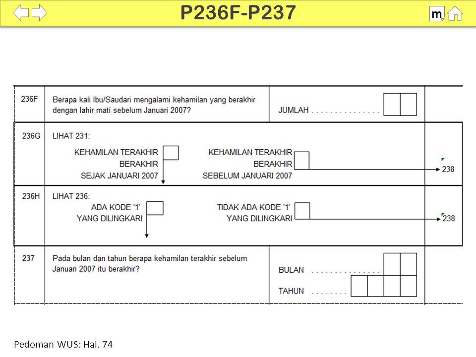 100% SDKI 2012 P236F-P237 m Pedoman WUS: Hal. 74
