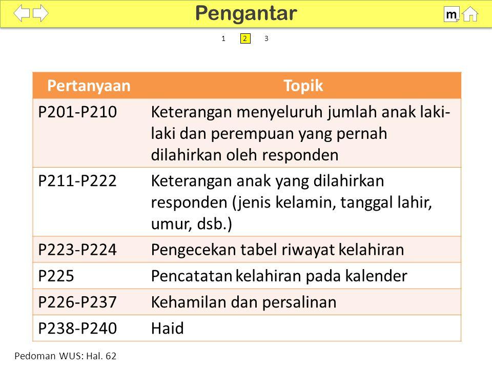 100% SDKI 2012 PertanyaanTopik P201-P210Keterangan menyeluruh jumlah anak laki- laki dan perempuan yang pernah dilahirkan oleh responden P211-P222Keterangan anak yang dilahirkan responden (jenis kelamin, tanggal lahir, umur, dsb.) P223-P224Pengecekan tabel riwayat kelahiran P225Pencatatan kelahiran pada kalender P226-P237Kehamilan dan persalinan P238-P240Haid Pengantar m Pedoman WUS: Hal.