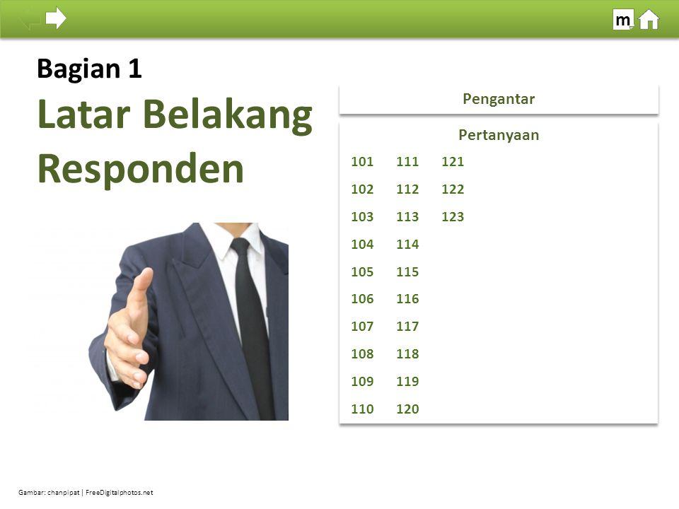 100% SDKI 2012 Tujuan: Memperoleh beberapa keterangan umum mengenai latar belakang responden.