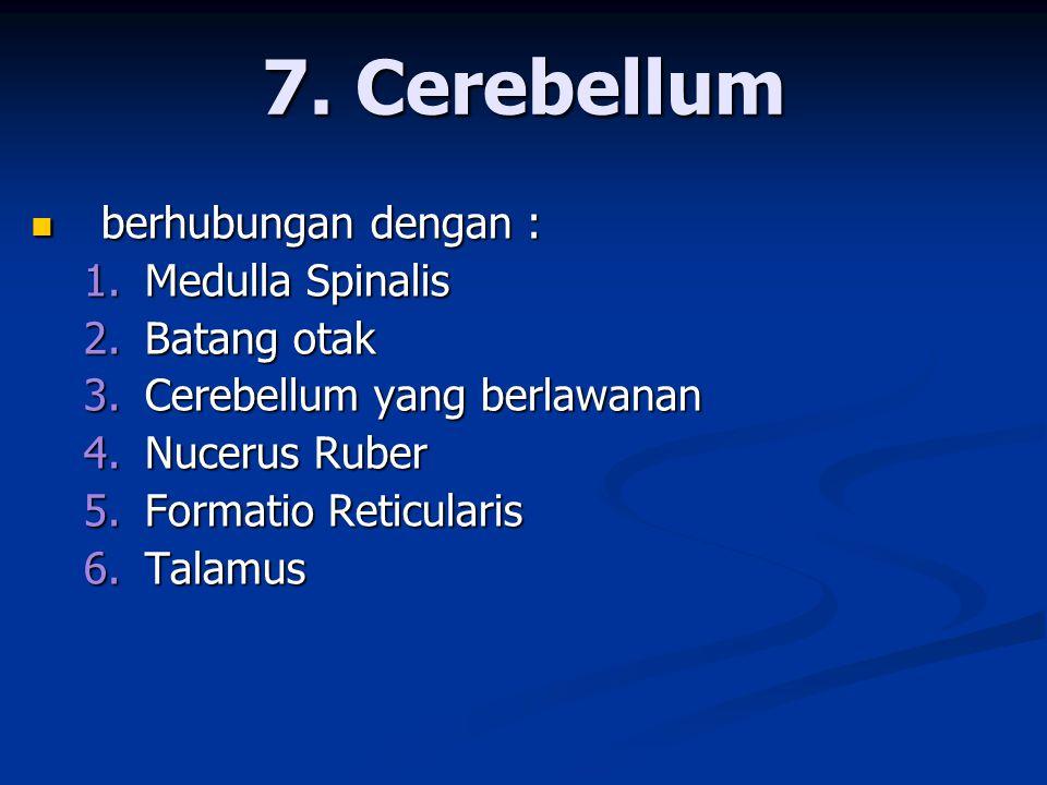  berhubungan dengan : 1. Medulla Spinalis 2. Batang otak 3. Cerebellum yang berlawanan 4. Nucerus Ruber 5. Formatio Reticularis 6. Talamus 7. Cerebel