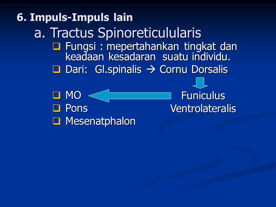 6. Impuls-Impuls lain  Fungsi : mepertahankan tingkat dan keadaan kesadaran suatu individu.  Dari: Gl.spinalis  Cornu Dorsalis  MO  Pons  Mesena