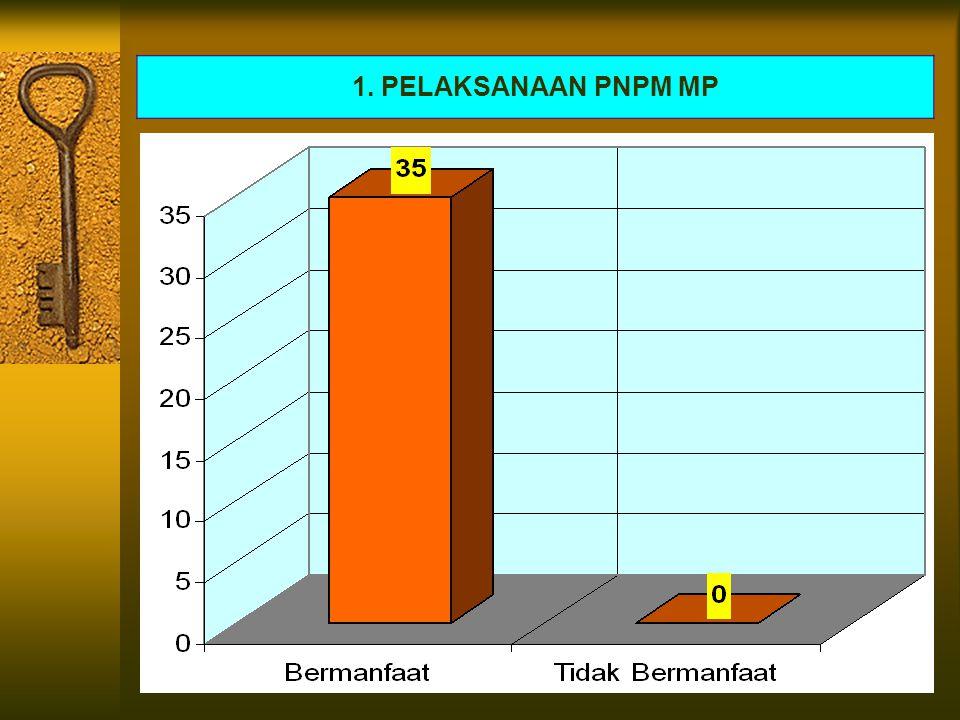 1. PELAKSANAAN PNPM MP