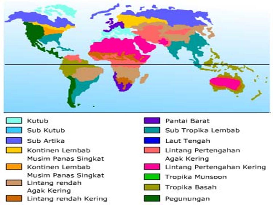 PLATE TECTONIC THEORY Untuk lebih jelasnya lihat …… Plate Tectonic Theory !!!