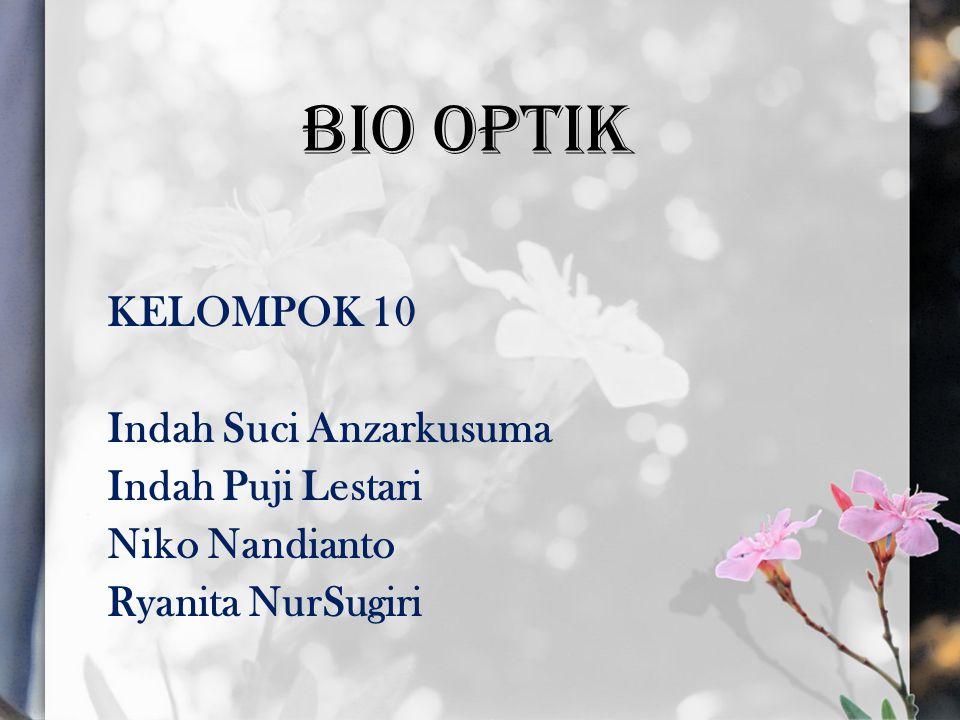 BIO OPTIK KELOMPOK 10 Indah Suci Anzarkusuma Indah Puji Lestari Niko Nandianto Ryanita NurSugiri