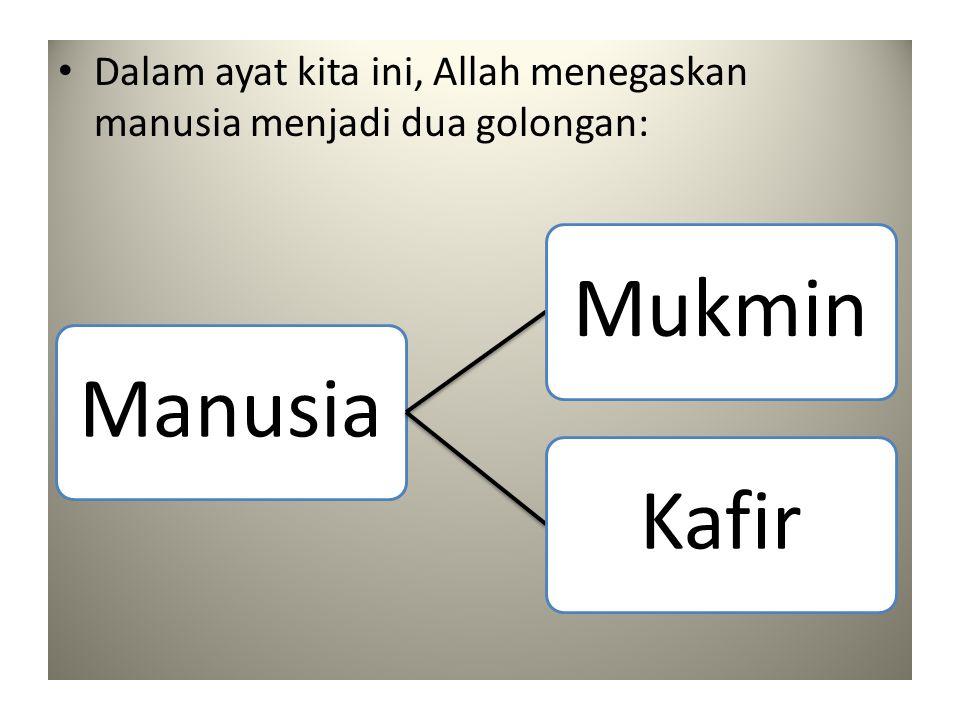 • Dalam ayat kita ini, Allah menegaskan manusia menjadi dua golongan: ManusiaMukminKafir