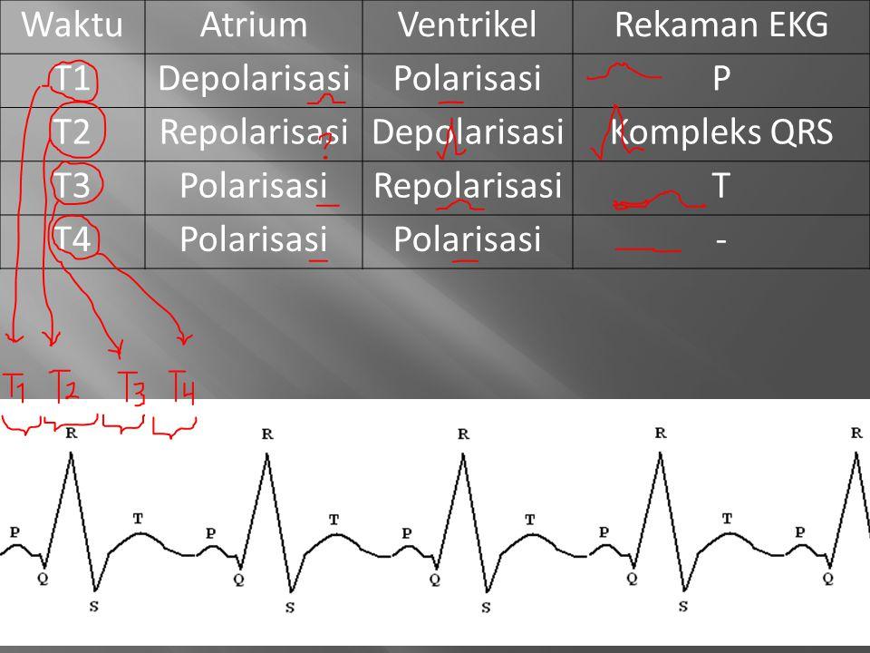 WaktuAtriumVentrikelRekaman EKG T1DepolarisasiPolarisasiP T2RepolarisasiDepolarisasiKompleks QRS T3PolarisasiRepolarisasiT T4Polarisasi -