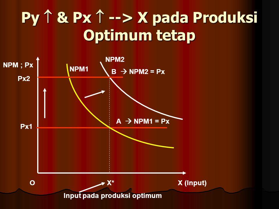 Py  & Px  --> X pada Produksi Optimum tetap X (Input) NPM ; Px O Px1 A  NPM1 = Px NPM1 X* Input pada produksi optimum Px2 NPM2 B  NPM2 = Px