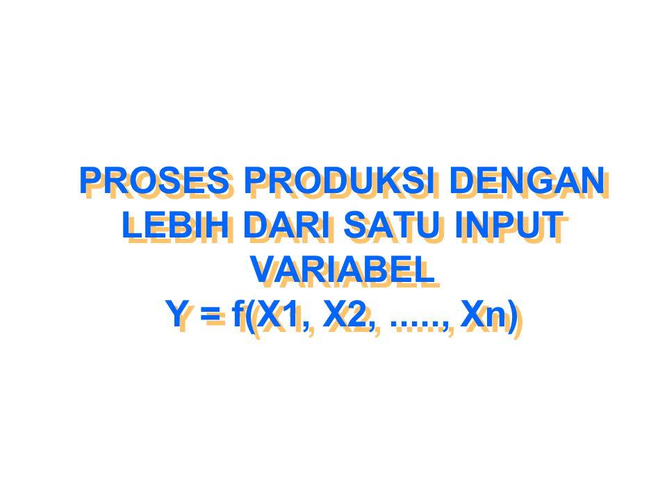 PROSES PRODUKSI DENGAN LEBIH DARI SATU INPUT VARIABEL Y = f(X1, X2,....., Xn)