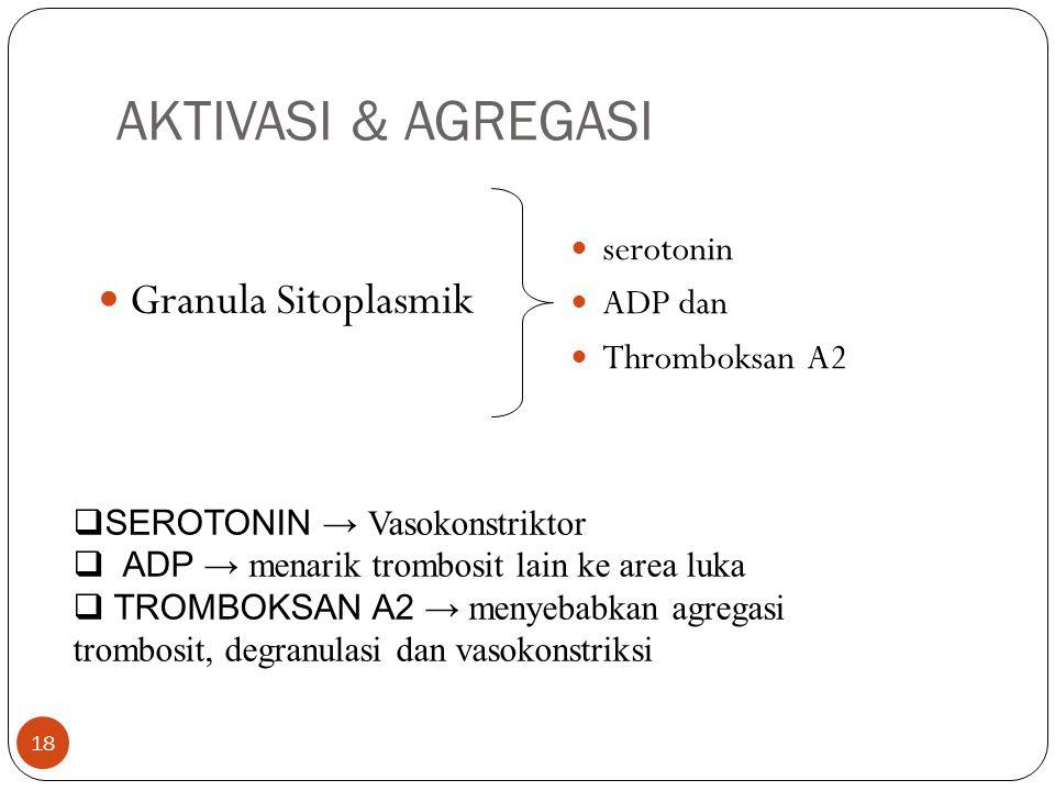AKTIVASI & AGREGASI  Granula Sitoplasmik  serotonin  ADP dan  Thromboksan A2  SEROTONIN → Vasokonstriktor  ADP → menarik trombosit lain ke area luka  TROMBOKSAN A2 → menyebabkan agregasi trombosit, degranulasi dan vasokonstriksi 18