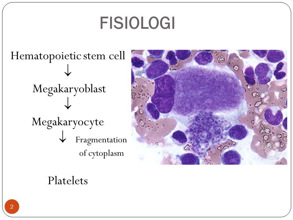 FISIOLOGI  Trombosit merupakan fragmen sitoplasma megakariosit  Umur dalam sirkulasi darah 8 – 10 hari  + 15% terpakai tiap hari  Jumlah normal dlm sirkulasi 150.000 - 400.000/ml  + 1/3 total massa trombosit terdapat dalam lien  Berada dalam sirkulasi dalam keadaan inaktif 3