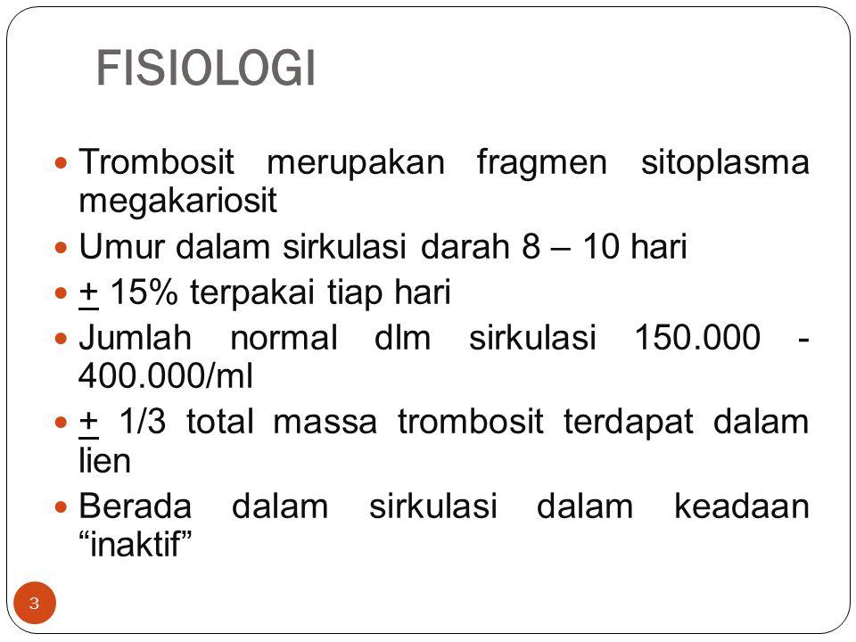 Trombositopenia 24