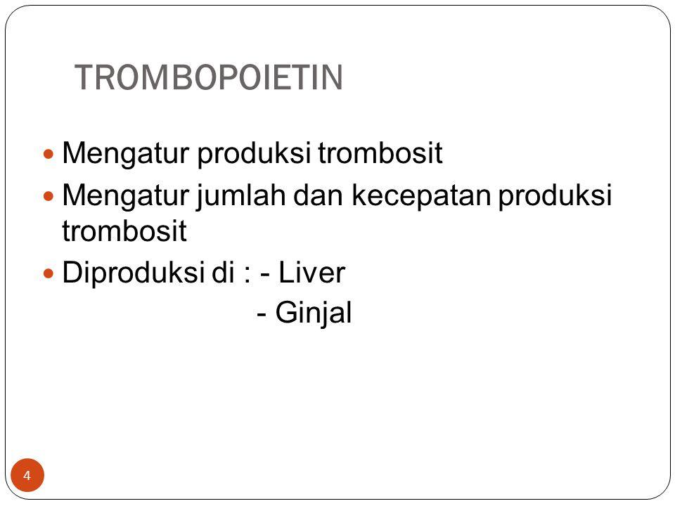 TROMBOPOIETIN  Mengatur produksi trombosit  Mengatur jumlah dan kecepatan produksi trombosit  Diproduksi di : - Liver - Ginjal 4