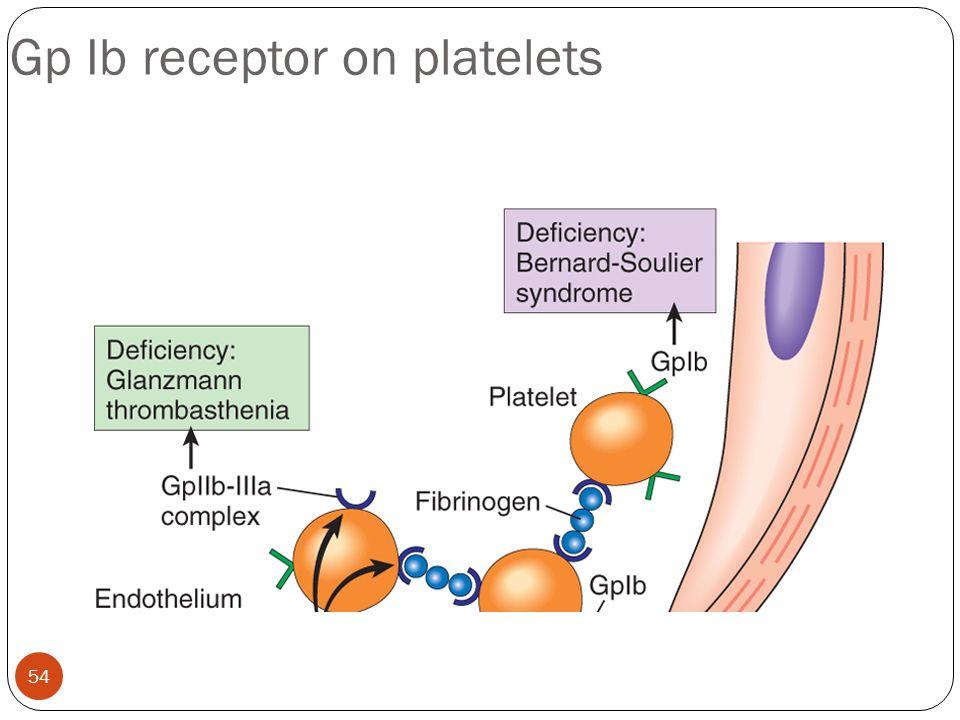 Gp Ib receptor on platelets 54