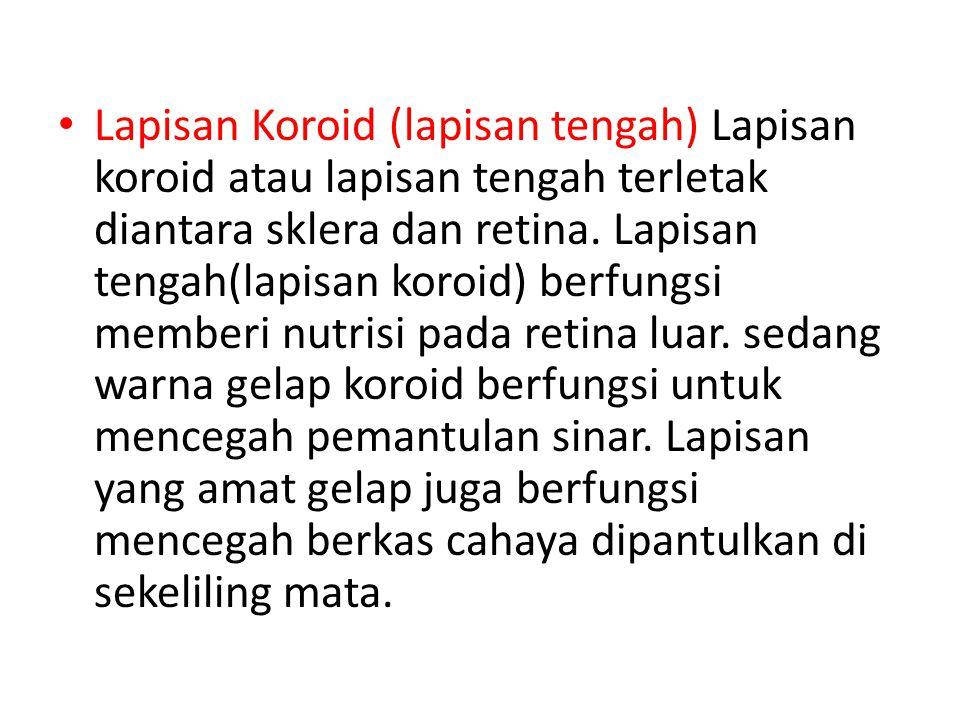 • Lapisan Koroid (lapisan tengah) Lapisan koroid atau lapisan tengah terletak diantara sklera dan retina. Lapisan tengah(lapisan koroid) berfungsi mem