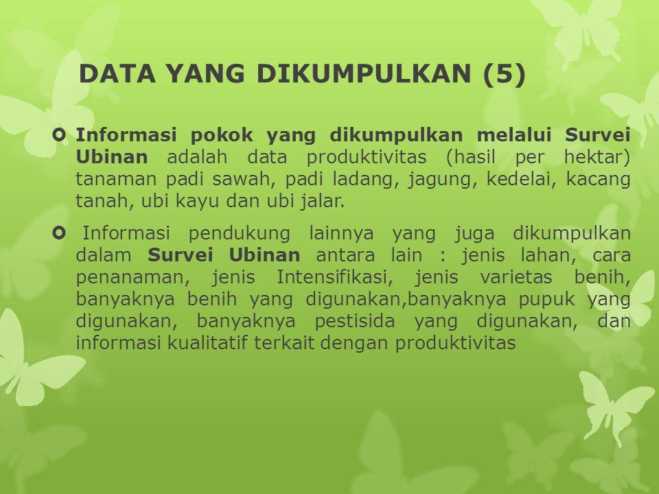 DATA YANG DIKUMPULKAN (5)  Informasi pokok yang dikumpulkan melalui Survei Ubinan adalah data produktivitas (hasil per hektar) tanaman padi sawah, pa