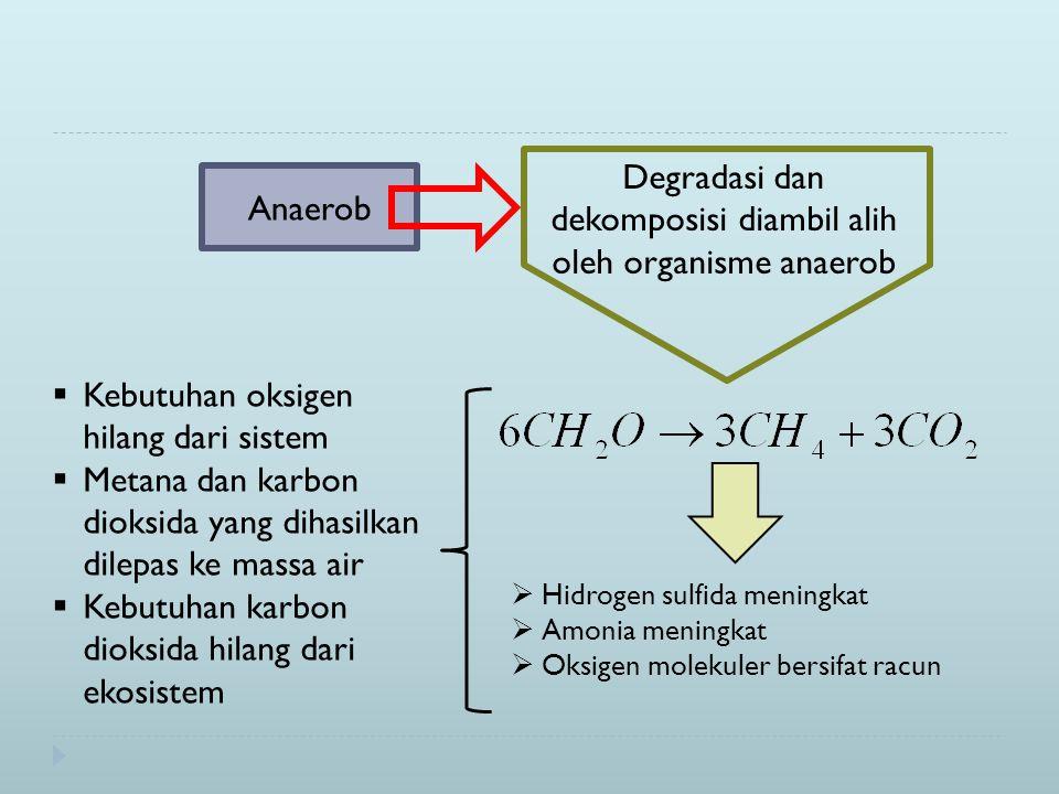 Degradasi dan dekomposisi diambil alih oleh organisme anaerob  Hidrogen sulfida meningkat  Amonia meningkat  Oksigen molekuler bersifat racun  Kebutuhan oksigen hilang dari sistem  Metana dan karbon dioksida yang dihasilkan dilepas ke massa air  Kebutuhan karbon dioksida hilang dari ekosistem